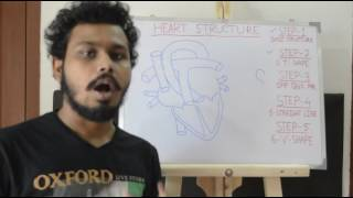 Download Easy way to draw heart structure by 5 steps | labeling of heart structure Video