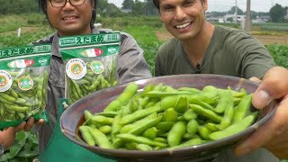 Download Edamame Farm | Japanese Superfood Snack Adventure ★ ONLY in JAPAN Video