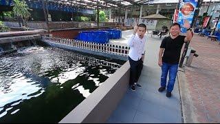 Download บางอ้อ : กฟผ. TAPE10 ll พาทัวร์ฟาร์มปลาคาร์ฟ Video