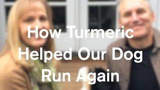Download How Turmeric Healed Our Dog And Helped Him Run Again - AnOregonCottage Video
