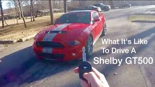 Download What It's Like To Drive a Shelby GT500! Video