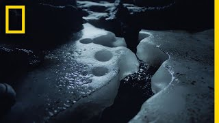 Download Iceland's Volcanic World   National Geographic Video