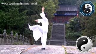 Download Wudang Xuan Wu Quan (Liang Yi Quan) by Master Chen Shiyu Video