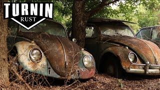 Download HUGE Abandoned Volkswagen Collection Found after 40 YEARS!! | 1960 VW Beetle | Turnin Rust Video