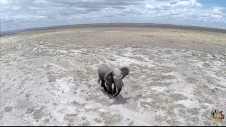 Download Kenya like never seen before! (drone footage) Video