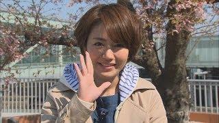 Download 磯山さやかの旬刊いばらき『茨城の桜』(平成26年4月4日放送) Video