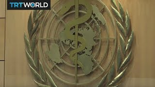 Download Insight: World Health Organization Video