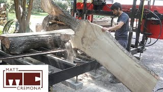 Download Slabbing a Clumpy Sugar Maple (Hard/Rock Maple) Video