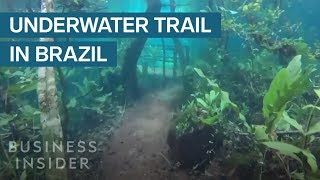 Download Heavy Rain Turned This Hiking Trail Into An Underwater Paradise Video