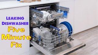 Download Leaking Dishwasher 5 Minute Fix Video