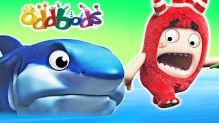 Download Oddbods | BABY SHARK | Funny Cartoons For Children | Oddbods & Friends Video