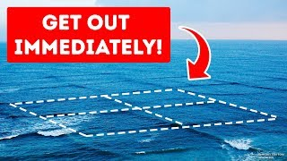 Download If You Swim in Square Waves, Your Life Is in Danger! Video