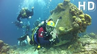 Download Amazing Dive Travel in Bonaire - HD 2013 Video