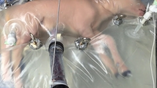 Download Researchers Create Artificial Womb Video