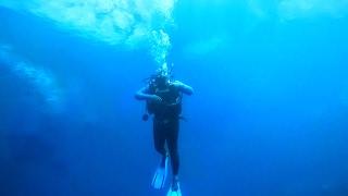 Download What Lies Beneath? Scuba Diving in Zimbabwe Video
