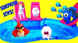 Download The Secret Life of Pets Dive for Blind Bag Toys at Pool! Dory & Angry Birds! Video