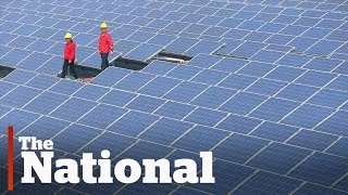 Download China's Green Energy Push Video