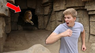 Download Exploring Secret Abandoned Zoo (NOT SAFE) Video