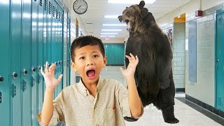 Download Trump's Education Secretary: Bears Are Threatening Our Schools Video