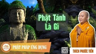 Download Phật Tánh Là Gì - Thầy Thích Phước Tiến Video