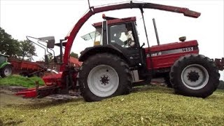 Download Case IH 1455 XL, Maishäckseln macht Spass !!! (Sound) Video