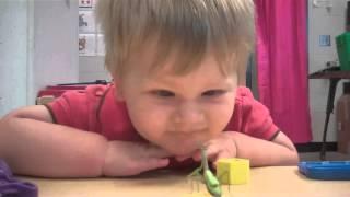 Download Praying Mantis Attacks Baby's Face Video