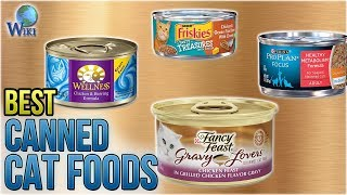 Download 10 Best Canned Cat Foods 2018 Video