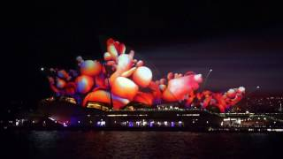 Download Sydney VIVID Light 2017 Opera House Full HD 50fps Video