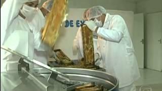 Download Iniciativa de apicultor de São Paulo garante qualidade de mel orgânico Globo Rural Video
