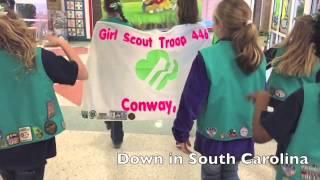 Download Blank Space Parody - Blank Form by Girl Scout Troop #446 Video