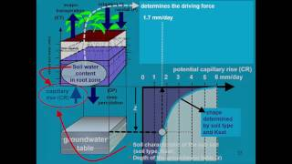 Download Soil water retention and movement Part 4 AquaCrop - Training module Nr. 3.1 (Unit 3. Soil) Video