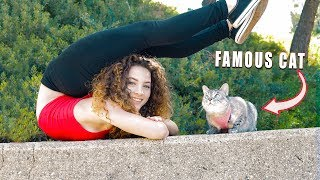 Download I GOT A CAT!?!? (Nala Cat) Video