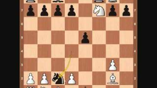 Download Chess Openings: Traxler Counter Attack Video