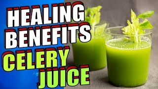 Download 20 Powerful Healing Benefits of Celery Juice for Hair, Skin and Health Video