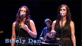 Download Dirty Works - Steely Dan Tribute Video