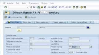Download SAP CO-PA: characteristic derivation Video