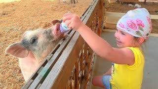 Download Old Macdonald Had a Farm 💖 Nursery Rhymes and Kids Song Video