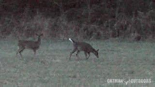 Download Christmas Eve Deer Hunt 2017... The 30-30 Speaks Video