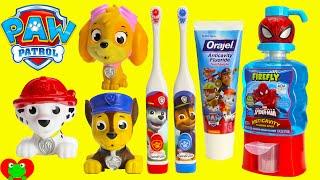 Download Paw Patrol Brush Teeth Surprises Shopkins Season 6 Video