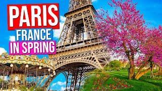 Download PARIS - FRANCE City Tour [Spring] | Paris in Springtime Video