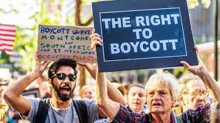 Download Judge Rules Government Can't Punish You For Boycotting Israel Video