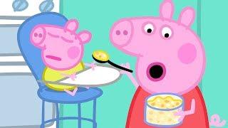 Download Peppa Wutz | Baby Alexander | Peppa Pig Deutsch Neue Folgen | Cartoons für Kinder Video