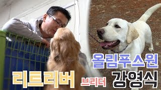Download [브리더를 만나다] 리트리버 - 강영식 라브라도리트리버, 골든 리트리버의 좋은 아빠, 브리더 강영식   Introducing Labrador Retriever Breeder. Video