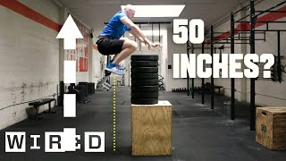 Download Why It's Almost Impossible to Jump Higher Than 50 Inches | WIRED Video