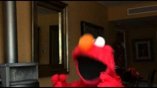 Download Elmo sings Beyonce's Single Ladies Video
