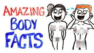Download Why Your Body Is AMAZING! Video
