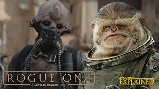 Download The New Aliens of Rogue One: A Star Wars Story Video