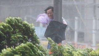 Download Typhoon Hato batters Hong Kong Video