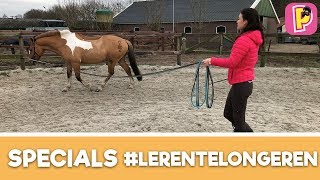 Download Leren te longeren | SPECIALS | Penny TV Video