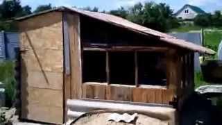 Download ямное содержание кроликов2 Video